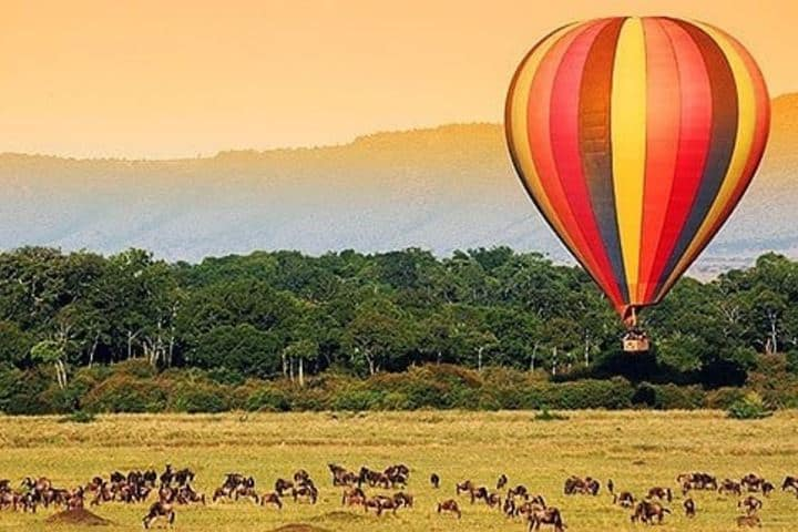 ¡El viaje en globo por el Parque Nacional Masai Mara es alucinante! Foto: masai_mara_safari
