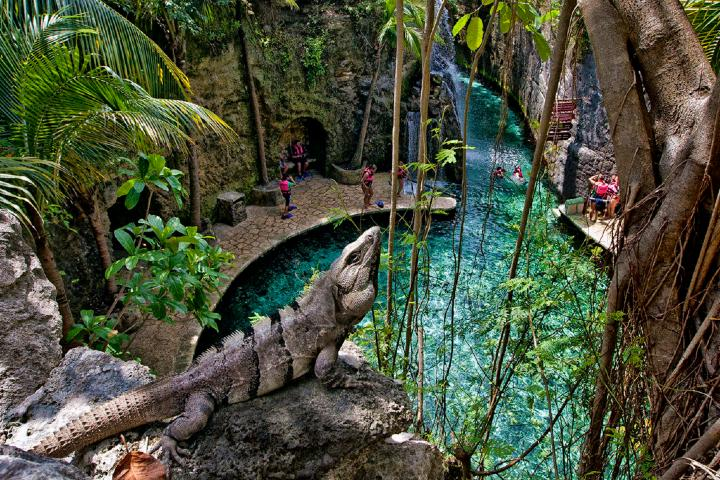 Un espacio 100% Eco-Friendly. Foto: Grupo Xcaret