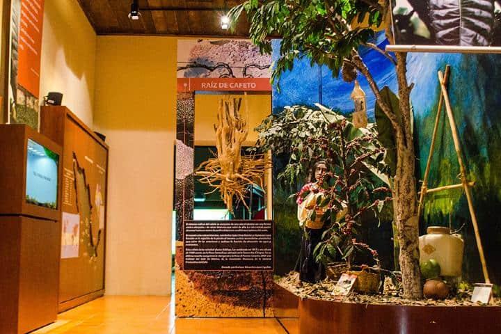 Sala del museo del café Chiapas. Foto: 101 museos