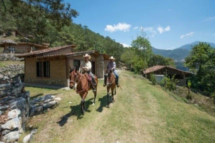 Ten una relajante cabalgata en Tetela de Ocampo Foto: Cabañas y Cascadas de Aconco