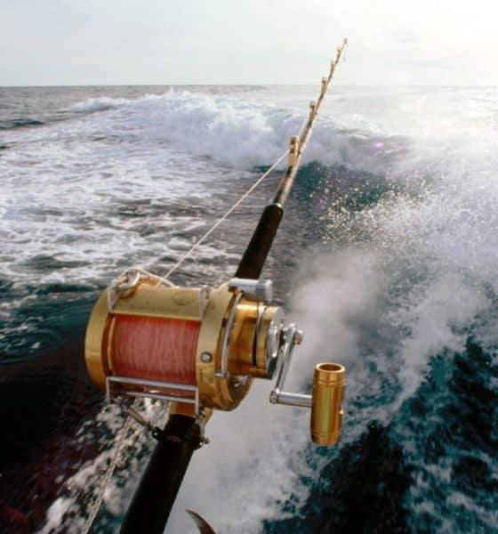 Pesca en Baja California Sur. Foto: Archivo