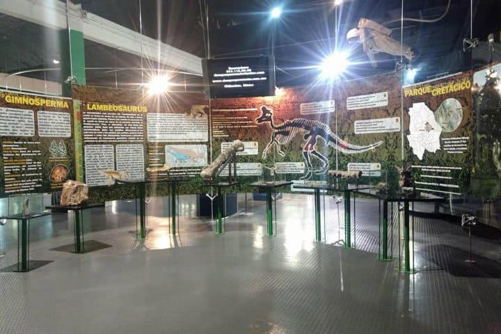semilla-museo-1