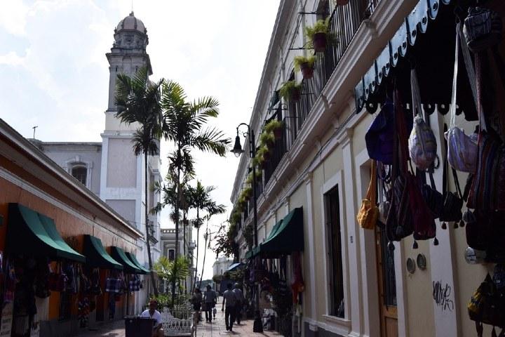 Andador Constitución. Foto: Colima Noticias