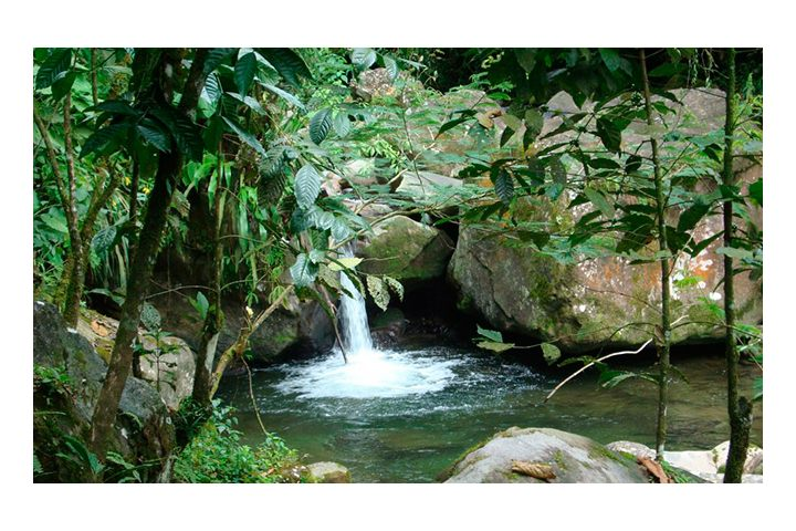 Cascada-de-las-Sirenas-en-Chiapas.-Foto_-Mexico-Travel-Club