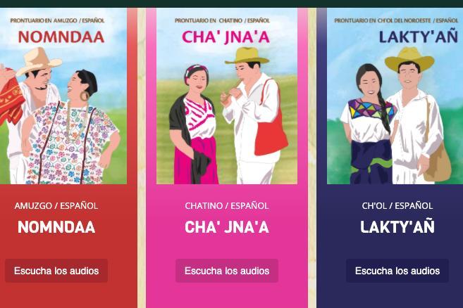 Catálogo de dialectos y lenguas indígenas - Imagen INALI