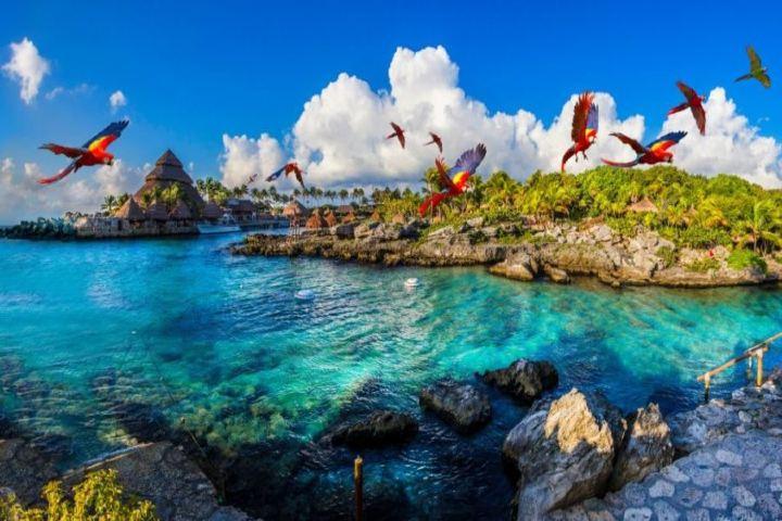 Nuevos proyectos de Xcaret Foto: Pasión Turística