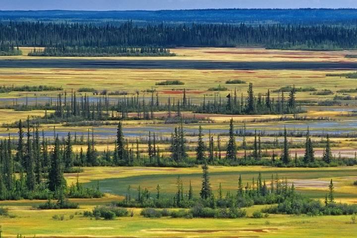 Parques nacionales en Alberta Canadá Foto: The Guardian