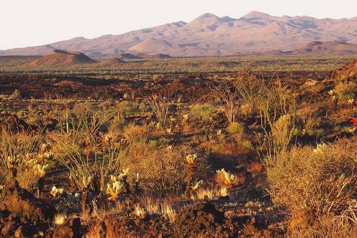 La-Sierra-del-Pinacate-en-Sonora.-Imagen_-Fernando-E-de-la-Torre-