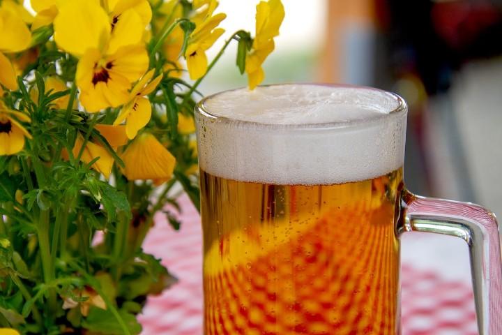 Cervezas-Mexicanas-Artesanales.-Foto.-Pixabay