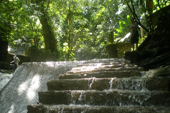 Edward-James-Garden.-Foto-fon-pon