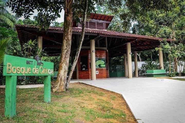 BOSQUE DE CIENCIA EN AMAZONAS BRASIL Foto: Fshoq