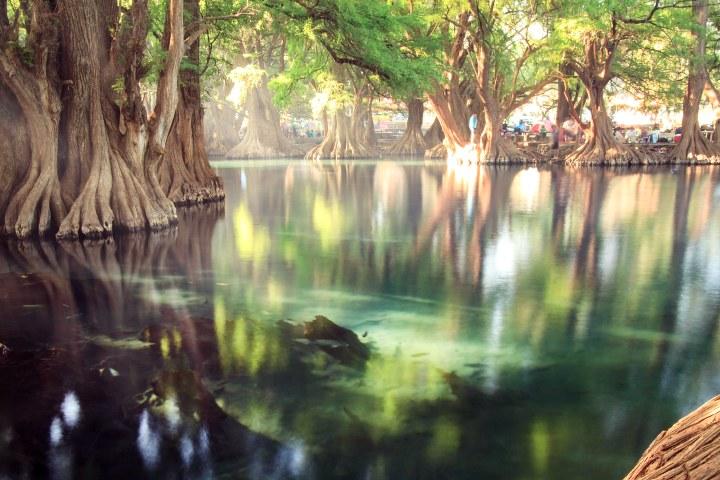 Lago Camécuaro en Michoacán. Foto Ricardo Villar