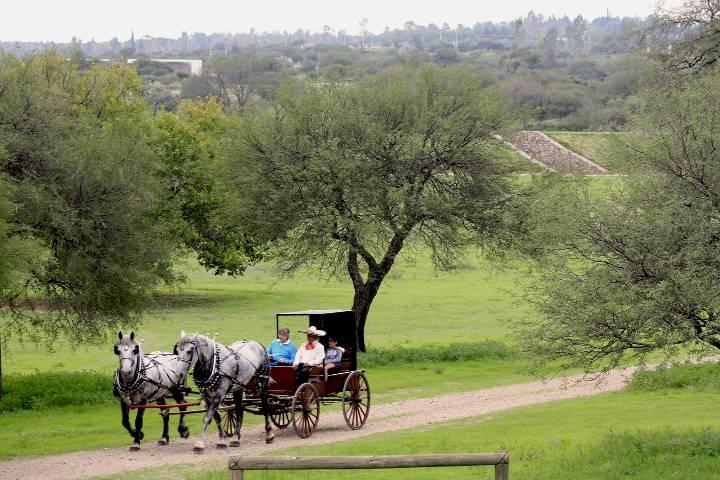 Carreta en Valle de los Senderos San Miguel de Allende