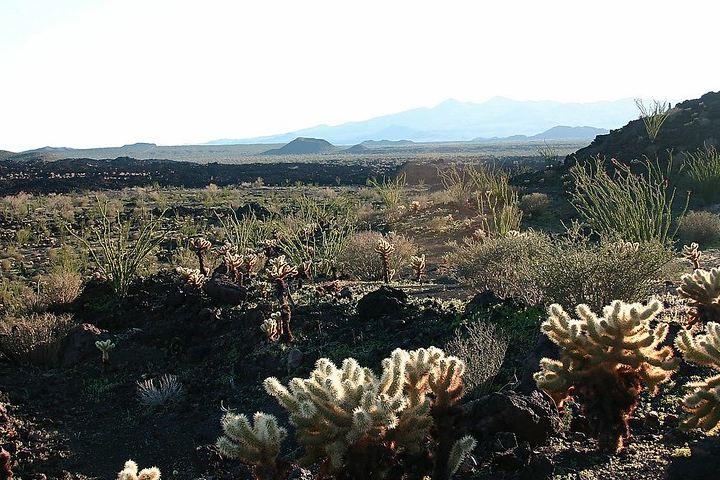 Sierra-del-Pinacate.-Foto_-Fernando-E-de-la-Torre