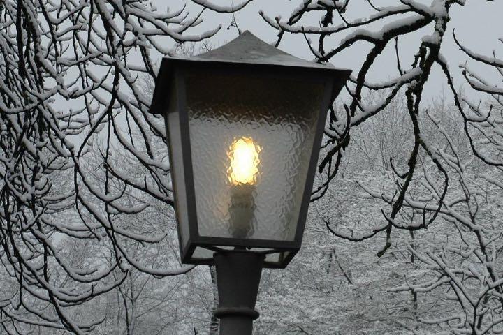 ¿Listo para viajar a Narnia? Foto: Enrico Spigarolo