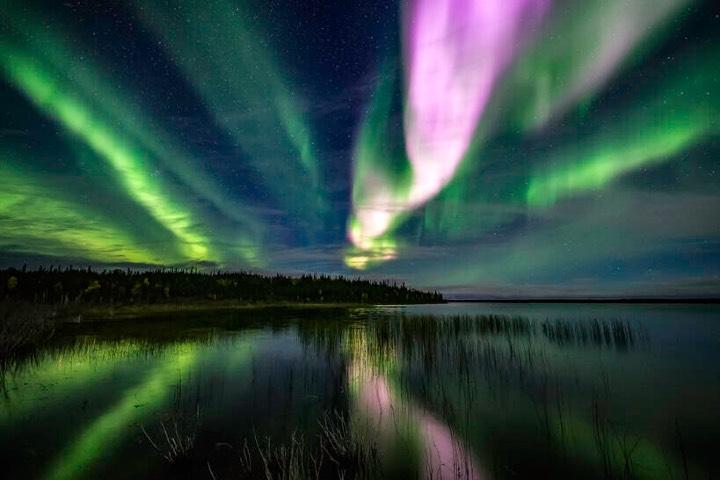 Disfruta las auroras boreales con la mejor compañía. Foto: Martin Male