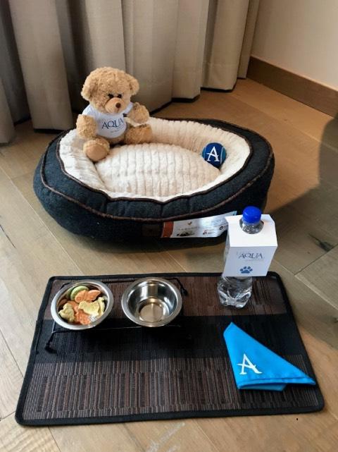 Dog Friendly de Live Aqua tratará a a nuestras mascotas como reyes. Foto: Archivo