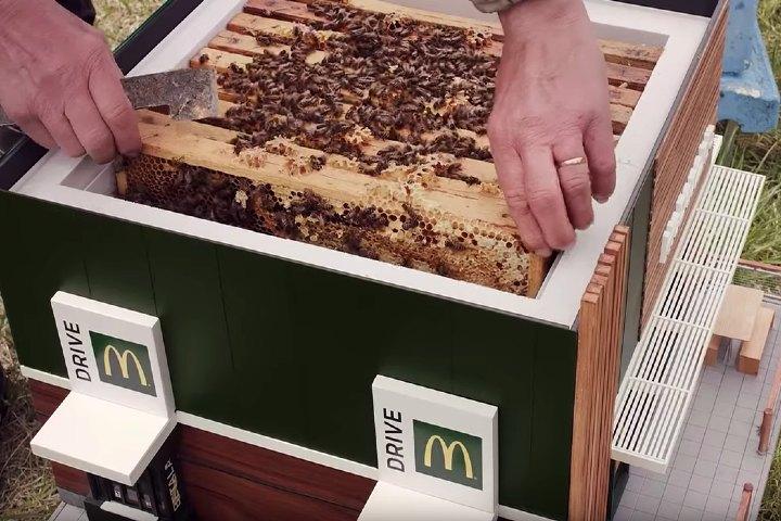 La colmena está pensada para albergar a miles de abejas. Foto: CLAD Global