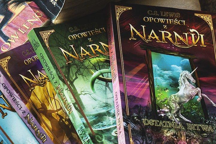 Las Crónicas de Narnia son lecturas que nos transportan a lugares épicos. Foto: Katrina_S | Pixabay
