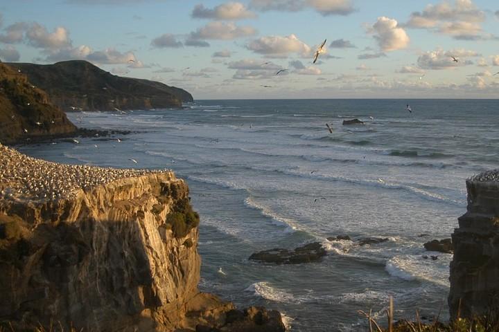 Playa Muriwai, una de las locaciones de Narnia. Foto: Jongjoon Moon | Pixabay