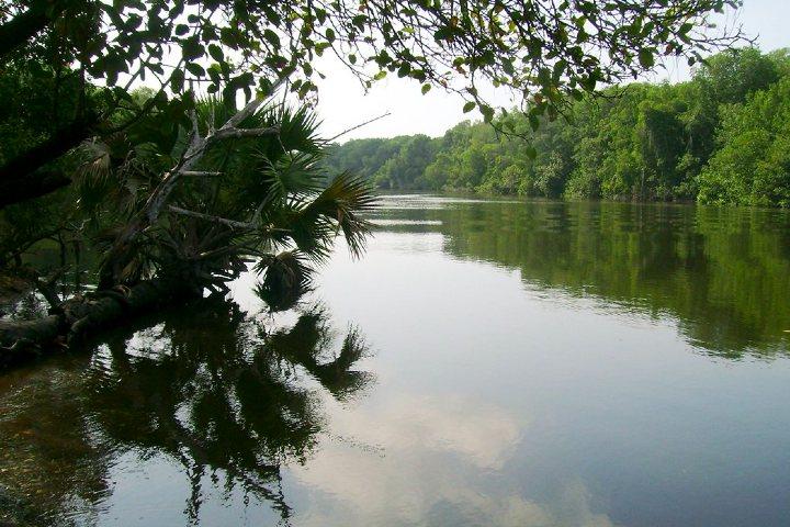 Reserva de la Biosfera Sierra de Abra-Tanchipa. Foto: Archivo