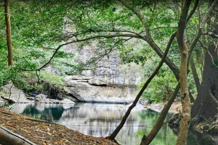 Reserva de la Biosfera Sierra de Abra-Tanchipa es un lugar en donde el color verde reina. Foto: Archivo