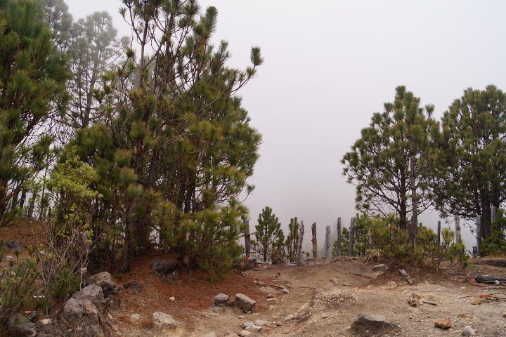 Planes tu ruta hacia la cima del Volcán Tacaná de Chiapas. Foto: wklcdn