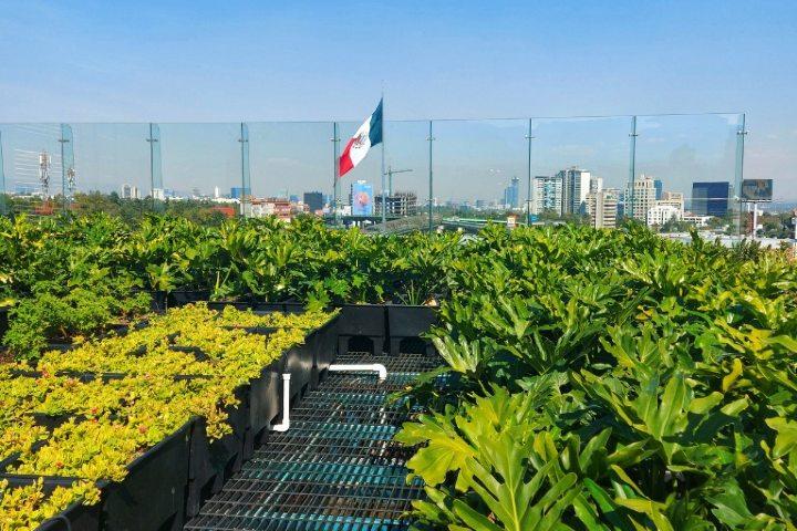 La maravillosa vista desde el roof garden Hotel Galería Plaza San Jerónimo. Foto: Negocios y Convenciones | Vero Sánchez.