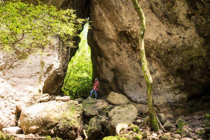 Centro Ecoturístico Temachitiani Quetzalcóatl en Morelos es un lugar escondido entre inmensa flora y fauna. Foto: Walking México