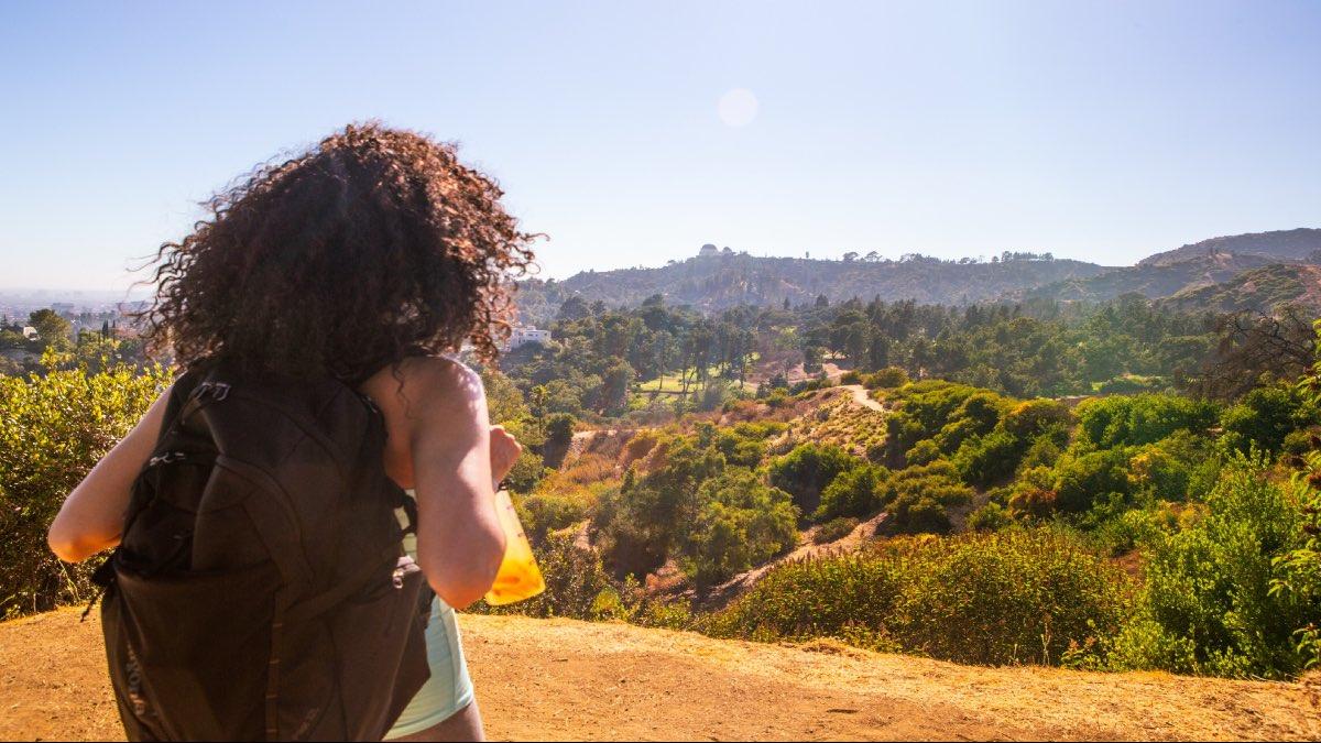 7 cosas que puedes hacer en Los Ángeles. Foto: Archivo