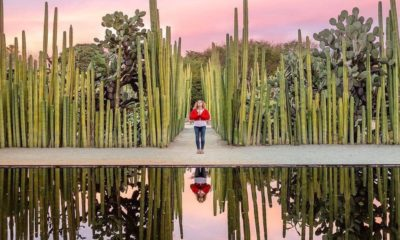 Concurso de fotografía de Visit México. Foto: @zuckerandspice