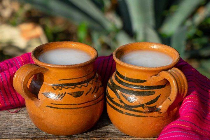 El pulque es una bebida deliciosa. Foto: Archivo