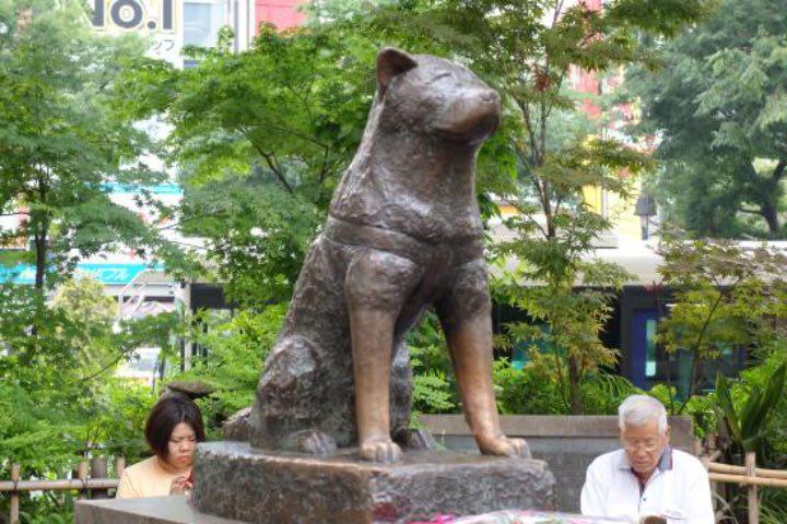 En Shibuya puedes encontrar la estatua de Hachiko. Foto: Archivo