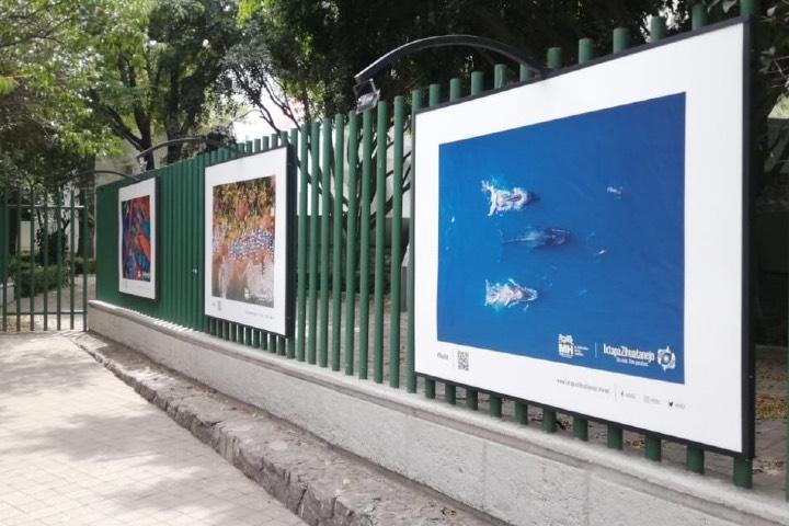 En el Parque Linconl de Polanco puedes disfrutar de la exposición. Foto: Archivo