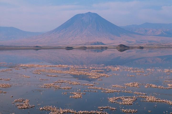 El Lago Natrón de Tanzania es un paraíso letal. Foto: Archivo