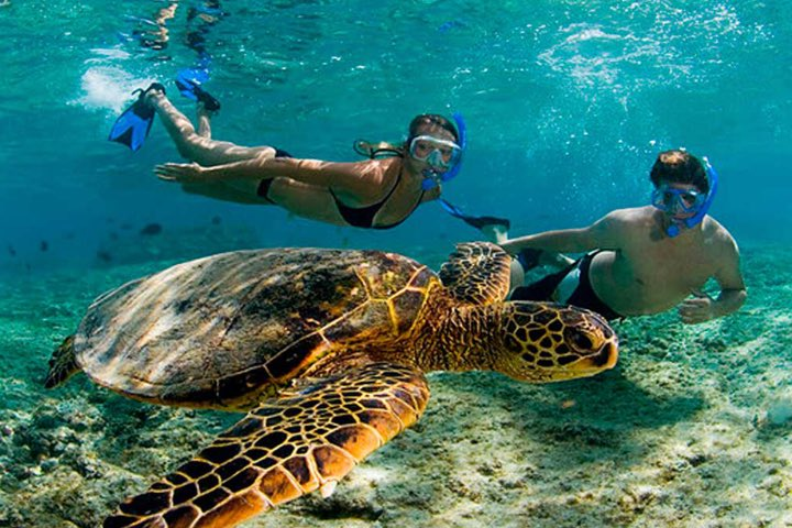 Laguna Yal-Kú en Riviera Maya. Foto: Tips Para Tu Viaje