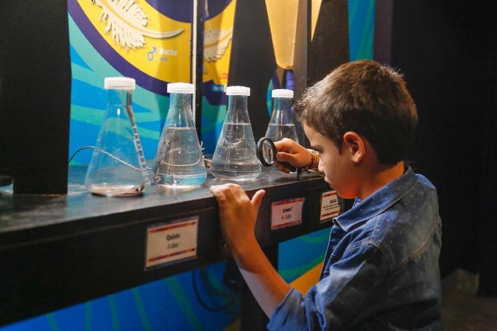 Los niños podrán disfrutar de la ciencia. Foto: Archivo