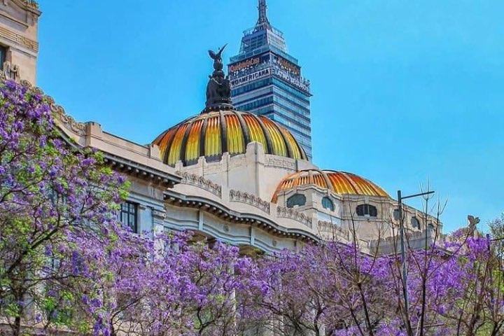 Participa en el concurso y gana un año de viajes por todo México. Foto: Iniesta_75