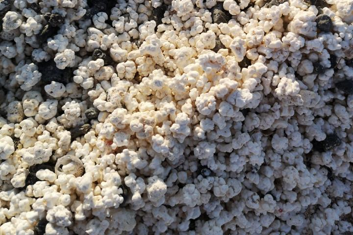 La playa de las palomitas de maíz tiene leyendas de piratas y tesoros. Foto: Sergio Rodríguez