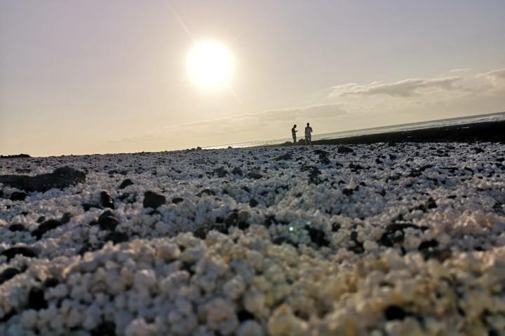 Disfruta del lugar y toma maravillosas fotos. Foto: Sergio Rodríguez