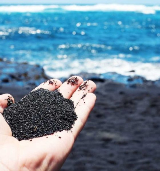 Punaluu Black Sand Beach. Foto: Archivo