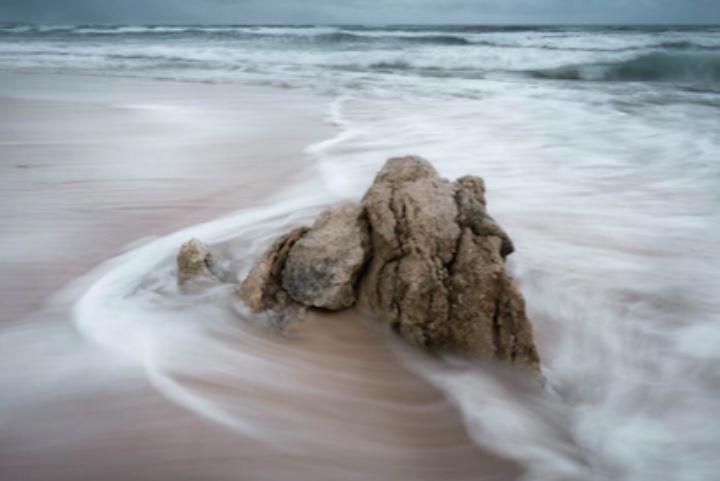 Con estos consejos para tomar fotos de la naturaleza tendrás resultados increíbles. Foto: Florent Serfati