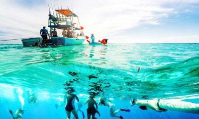Experiencias con la naturaleza del Caribe Mexicano. Foto: Consejo de Promoción Turística de Quintana Roo