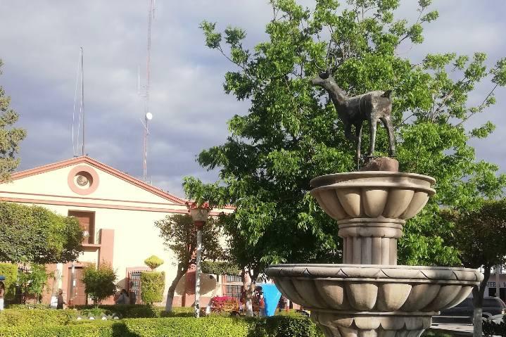 Fuentes y Palacio Municipal - Foto Luis Juárez J
