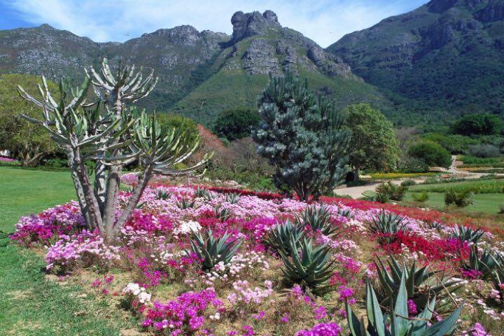 Jardines botánicos. Foto: SA Specialist