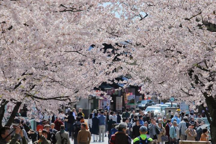 Kanazawa.-Foto-Dreamstime