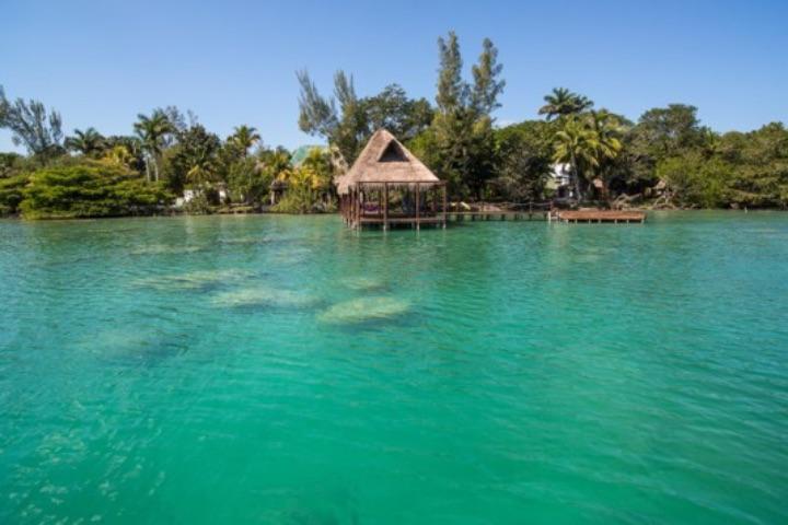 La laguna de Bacalar espera a que disfrutes de las experiencias de la naturaleza en el Caribe Mexicano. Foto: Consejo de Promoción Turística de Quintana Roo