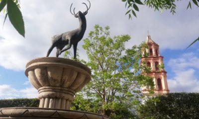 PORTADA-Venado-y-Guanamé-Foto-Luis-Juárez-J