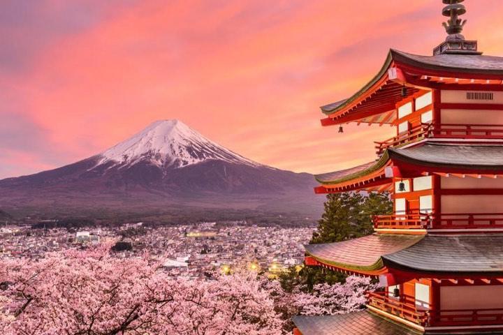 Primavera en Japón. Foto: Mochileros en Tailandia