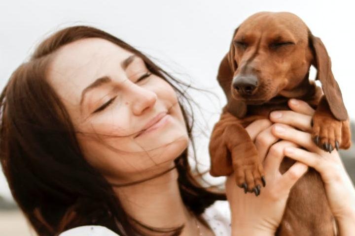 ¿Sabes cómo viajar gratis? Puedes hacerlo cuidando mascotas. Foto: Dominika Roseclay